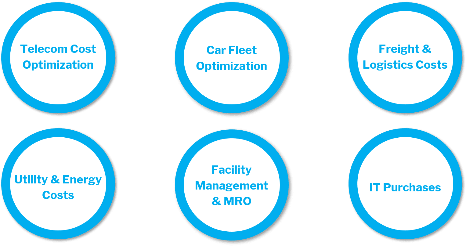 Different categories underneath the Indirect Purchasing umbrella that we achieve success in with our clients: Telecom Cost Optimization, Car Fleet Optimization, Freight & Logistics Costs, Utility & Energy Costs, Facility Management & MRO, and IT Purchases.